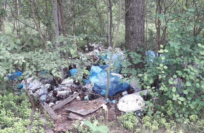 Несанкционированная свалка мусора в лесу